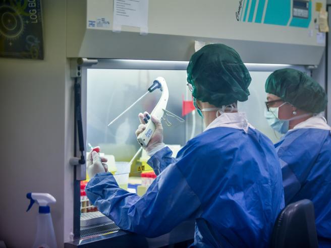 Italia prodhon testin sereologjik  5 euro për 1 orë  jepet Patenta e Imunitetit